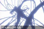 Синдзюку - город-ад / Demon City Shinjuku / Makai Toshi Shinjuku / Hell City Shinjuku / Monster City (1988) DVDRip | DVO