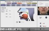 Английский на диване v 2.0 (2013) Мультимедийный курс