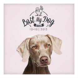 VA - Lost My Dog 10x10: 2013 (2015)
