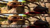 Махни крылом в 3Д / Yellowbird 3D Вертикальная анаморфная