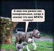 Фотоподборка '220V' 08.08.15