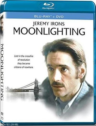 Moonlighting 1982 BRRip XviD MP3-RBG