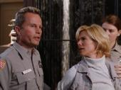 Голливудское сафари / Hollywood Safari (1997) DVDRip