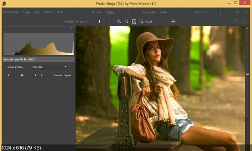 PictureCode Photo Ninja 1.2.6 (x86x64). �������� �2
