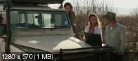 �������� ���� / Heatstroke (2013) BDRip 720p | MVO