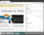 Torch 42.0.0.10338 - веб браузер